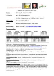 Ausschreibung im PDF - Computerauswertung.at