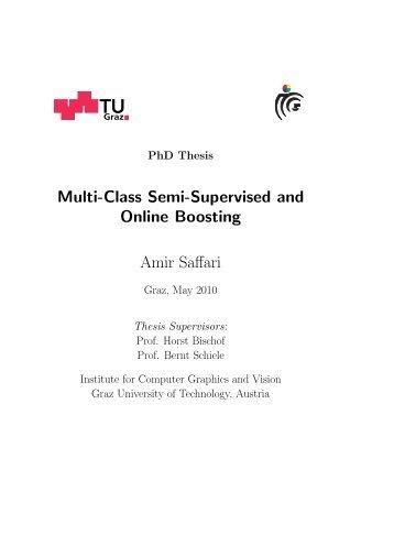 Multi-Class Semi-Supervised and Online Boosting Amir ... - CiteSeerX