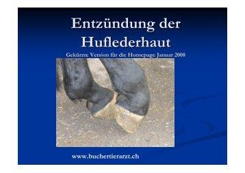 2. Lederhautentzündung wie Steingalle, Abszess...