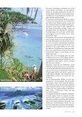 charter - Segel-Tauchreisen - Seite 4