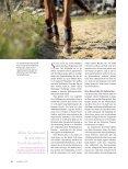 Vom Politsessel in den Reitsattel (Hans Hollenstein) - Sarah Forrer - Seite 3