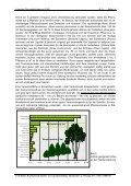 Der Einfluss mehrschichtiger Vegetation auf das Sickerwasseraufkom - Seite 4