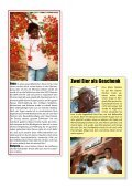 Boa Vista – Entwicklungen - SAM - Page 7