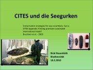 CITES und die Seegurken
