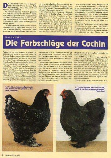 Die Farbschläge der Cochin NEU - Brahmazucht.eu