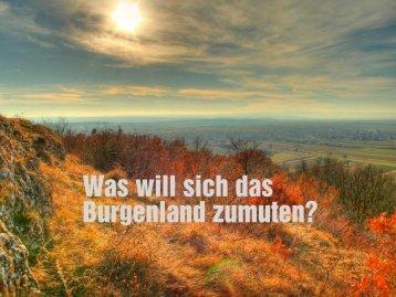 Was will sich das Burgenland zumuten? - eco-strat: Eco-strat