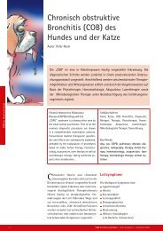 Chronisch obstruktive Bronchitis (COB) des Hundes und ... - Zivet.de