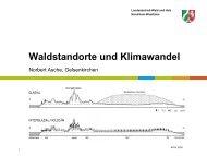 Vortrag Asche, N.: Waldstandorte und Klimawandel (pdf 4.7 M) - AFSV