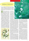 Apotheken-Kundenzeitschrift - Neue Medien - Seite 3