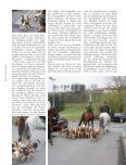 Bei Interesse wenden Sie sich bitte an - Frankenmeute - Seite 4