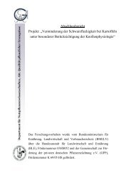 """Abschlussbericht Projekt: """"Verminderung der ... - BLE"""