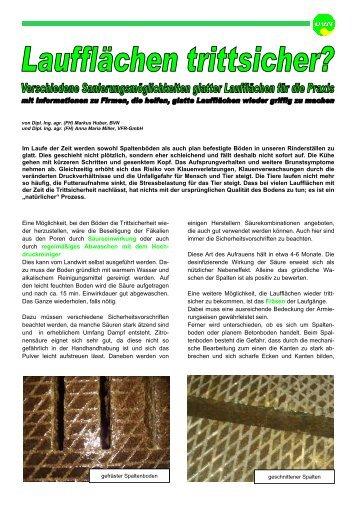 Laufflächen trittsicher 2013-06.pub