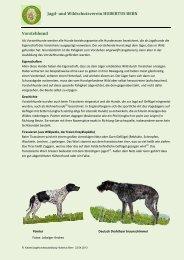 Jagd- und Wildschutzverein HUBERTUS BERN Vorstehhund