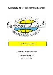 Lampen und Leuchten - Energiewende ER(H)langen