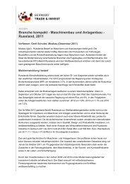 Branche kompakt - Maschinenbau und Anlagenbau - Russland, 2011