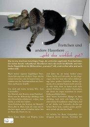 Frettchen und andere Haustiere - Frettchenvomdeich.de