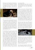 Frettchen und andere Haustiere - Frettchenvomdeich.de - Seite 2