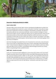 Kurzvorstellung Deutscher Waldschutzfonds im NABU
