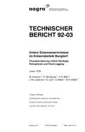 Deutsch (9.3 MB) - Nagra