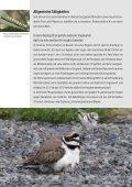 Jahresbericht 2010 - Umweltgruppe Hindelbank - Seite 2