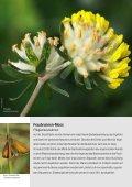 Jahresbericht 2010 - Umweltgruppe Hindelbank - Seite 4