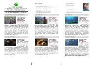 Donnerstag 05. Sept. 2013 - Green Screen