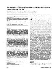 The Beneficial Effects of Thyroxine on Nephrotoxic Acute Renal ...