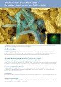 IPUSmeth-max® Biogas Migulatoren - die patentierte ... - Seite 6