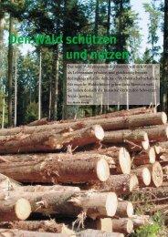 Den Wald schützen und nutzen - Natürlich