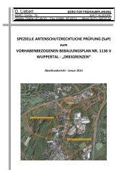 Spezielle artenschutzrechtliche Prüfung - Stand ... - Stadt Wuppertal