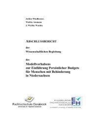 Vorläufige Gliederung Abschlussbericht - Niedersächsisches ...