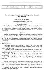 Die Gattung Erysimum auf den Kapverden, Kanaren und Madeira.