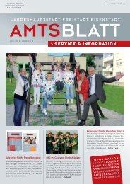 6. Ausgabe 18.6.13 - Eisenstadt