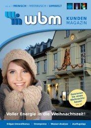 03/2010 zum Download (PDF) - wbm