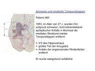 Amnesie und medialer Temporallappen Patient HM: 1953, im Alter ...
