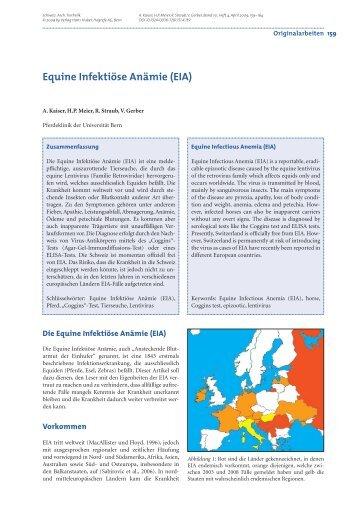 Equine Infektiöse Anämie (EIA)