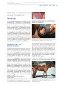 Equine Infektiöse Anämie (EIA) - Seite 3