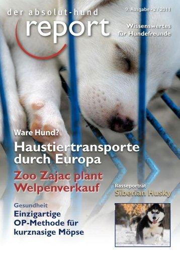 absolut-hund report - Leben mit 4 Pfoten