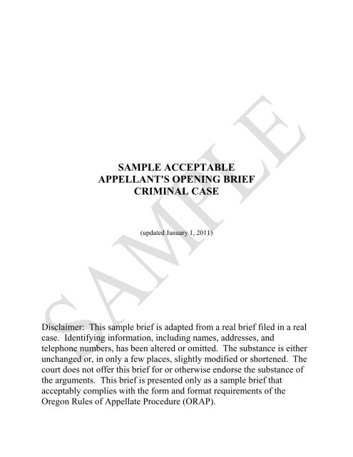sample acceptable appellant s opening brief criminal case