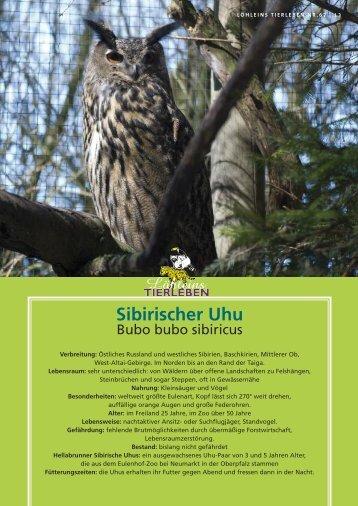 Sibirischer Uhu - Tierparkfreunde Hellabrunn eV