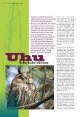 Sibirischer Uhu - Tierparkfreunde Hellabrunn eV - Seite 2