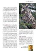 Sibirischer Uhu - Tierparkfreunde Hellabrunn eV - Seite 3