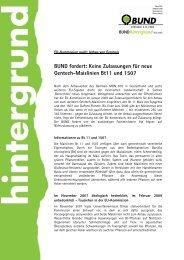 Keine Zulassungen für neue Gentech-Maislinien Bt11 und ... - Bund