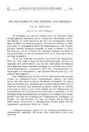 A Magyar Természettudományi Múzeum évkönyve 4. (Budapest 1906)