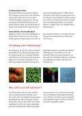 Info für Erfinder herunterladen - Seite 4