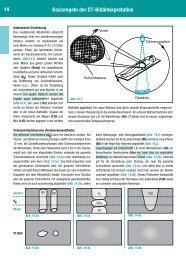 14 Basisregeln der CT-Bildinterpretation - Klinikfinder.de