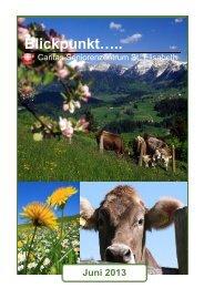 Ausgabe Juni 2013 - Seniorenzentrum Oberstaufen