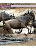 Kenya/Fernreisejournal - Nur Reisen ist Leben - Seite 4