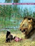 Kenya/Fernreisejournal - Nur Reisen ist Leben - Seite 5