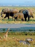 Kenya/Fernreisejournal - Nur Reisen ist Leben - Seite 7